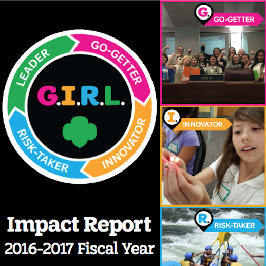 2016-2017 Annual Report Thumbnail